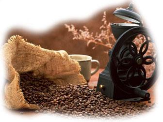 istoria-cafelei